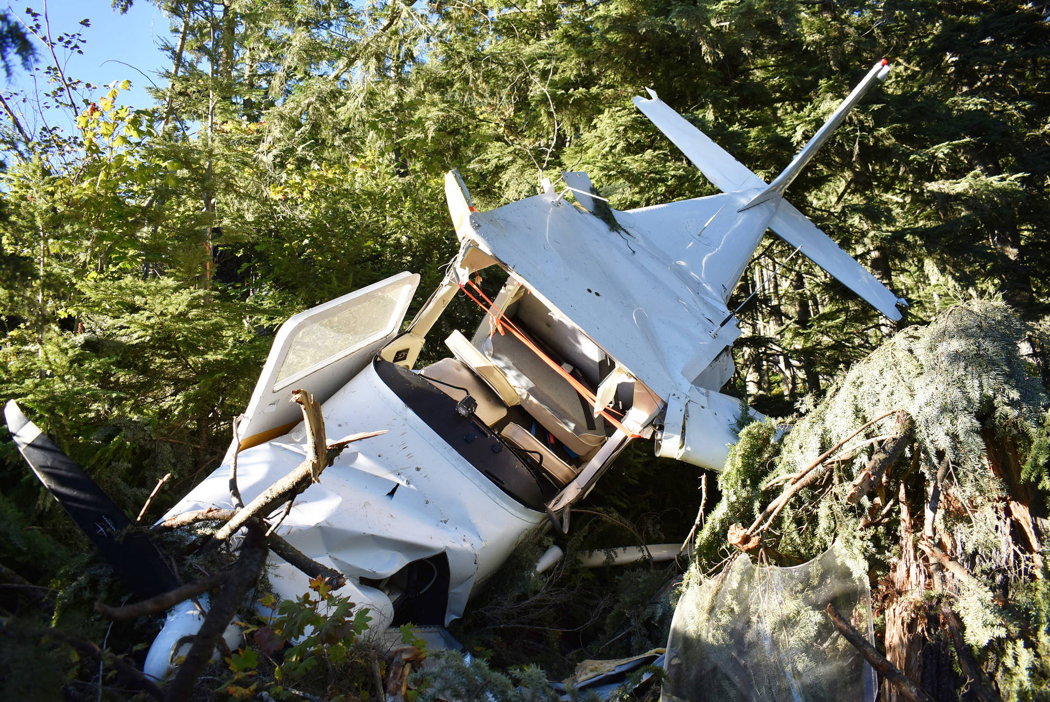 The single-engine Cessna crashed with one person onboard Saturday, Sept. 5 near a forest service road between Hope and Sunshine Valley. (Emelie Peacock/Hope Standard)
